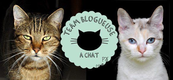 Prendre le temps - Blogueuse à chats